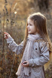 Sweet girl in a cap with the deer in autumn in a field of dry grass Stock Images