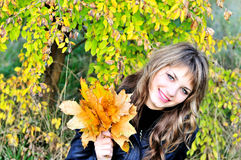 Sweet girl in fall forest Stock Images