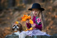 Sweet girl in a hat weaves wreath of autumn maple leaves royalty free stock images