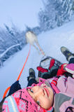Sweet girl riding on reindeer. Royalty Free Stock Image