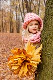 Sweet girl in a scarf and hat of rough hand-knitted with a bouquet of maple leaves peeking out from behind a tree in a cold park Stock Photo