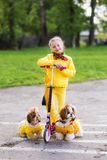 Sweet girl in a yellow dress katatsya scooter with dogs in the park Stock Images