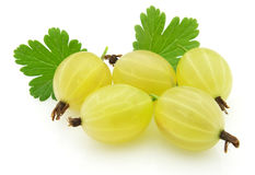 Sweet gooseberry Royalty Free Stock Photo