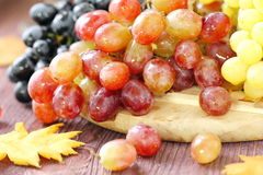 Sweet grape of different kinds Stock Photos