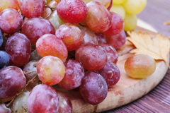 Sweet grape of different kinds Royalty Free Stock Images
