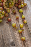 Sweet grapes. Sweet and biological grapes. Natural an tasty Royalty Free Stock Photography