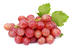 Sweet grapes with drops Royalty Free Stock Images