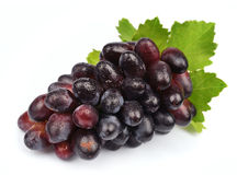 Sweet grapes fruit Royalty Free Stock Images