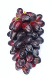 Sweet grapes fruit Royalty Free Stock Image