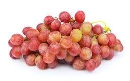 Sweet grapes fruit Royalty Free Stock Image