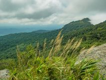 Sweet grass and cloud sky view on Khao Luang mountain in Ramkhamhaeng National Park. Sukhothai province Thailand stock photos