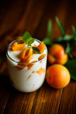 Sweet Greek yogurt with apricots Stock Image