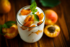 Sweet Greek yogurt with apricots Stock Photo