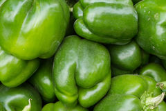 Sweet green bell peppers. Vegetable Market. Peppers on the counter market. Lots of peppers Royalty Free Stock Photography