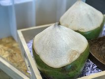 Sweet green coconuts Royalty Free Stock Image