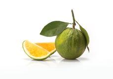 Sweet green Oranges fruit Stock Images