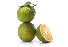 Sweet green Oranges fruit Stock Image