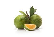 Sweet green Oranges fruit Stock Photo