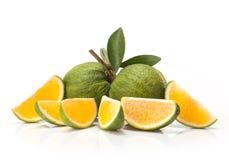 Sweet green Oranges fruit Stock Photos