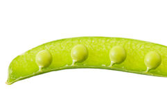 Sweet green peas. Sweet green peas isolated on white background Royalty Free Stock Photo