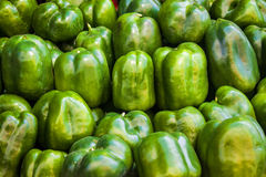 Sweet green pepper Royalty Free Stock Photo
