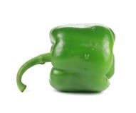 Sweet green pepper Stock Photos