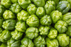 Sweet green peppers as bacground Stock Images