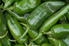 Sweet green peppers. Vegetable Market. Peppers on the counter market. Lots of peppers Royalty Free Stock Images