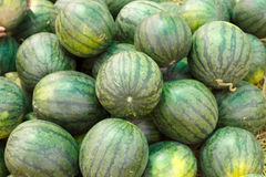 Sweet green watermelons Royalty Free Stock Photos