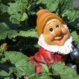 A sweet happy garden dwarf royalty free stock images