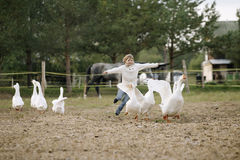 Sweet happy little girl running after a flock of geese on farm his arms to the side and smiling. Lifestyle portrait stock photography