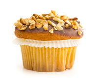 Sweet hazelnut muffin. Stock Images