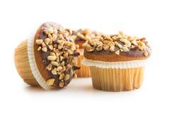 Sweet hazelnut muffins. Stock Photography