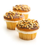 Sweet hazelnut muffins. Stock Photos