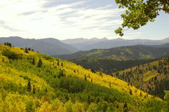 Forested mountain range Stock Photos
