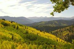 Forested mountain range stock photos