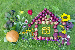 Sweet home from fruits concept. Sweet lovely  home children collage from fruits on grees grass lawn concept Stock Image