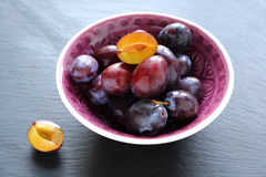 Sweet homegrown plum Stock Photo