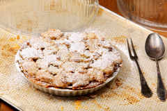 Sweet homemade apple cake with powdered sugar Royalty Free Stock Photos