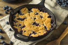 Sweet Homemade Blueberry Cobbler Dessert Stock Photo