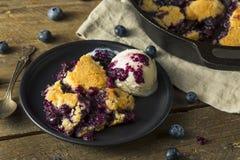 Sweet Homemade Blueberry Cobbler Dessert. With Ice Cream royalty free stock photo