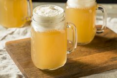 Sweet Homemade Butterscotch Butter Beer. In a Mug royalty free stock photo