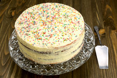 Sweet homemade cake Royalty Free Stock Image