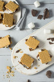 Sweet Homemade Chocolate Smores Dessert. With Marshmallows Stock Photography