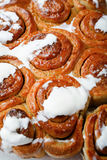 Sweet Homemade Cinnamon Rolls closeup Stock Images