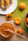 Sweet homemade meal Stock Image