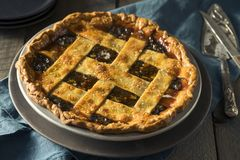 Sweet Homemade Mincemeat Pie Royalty Free Stock Photography