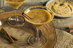 Sweet Homemade Pumpkin Vodka Martini. With Cinnamon Stock Photos