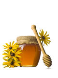 Sweet Honey Royalty Free Stock Images