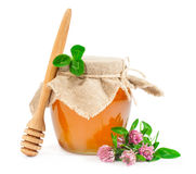 Sweet honey  with clover Stock Photo